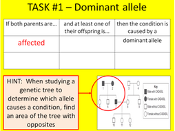 Topic B3: Genetics (Edexcel GCSE Combined Science)