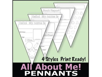 ESL All About Me Pennants