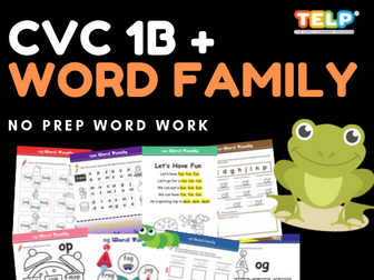 CVC & WORD FAMILY 1B - IT, OG, OP, OT, UG, UM, UN,