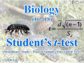 3.6.1.1 Statistics - Kinesis In Woodlice (Student's t-Test)
