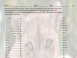 Animals Word Links