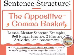 sentence structure with the appositive the comma basket by