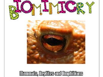STEAM - Biomimicry for Young Children - Mammals, Reptiles and Amphibians
