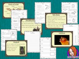 bats-lesson-plan-preview.png
