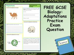 FREE GCSE Biology (Science) Adaptations Practice Exam Question