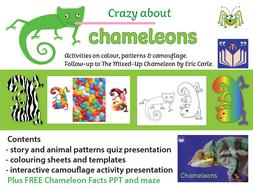 Crazy About Chameleons