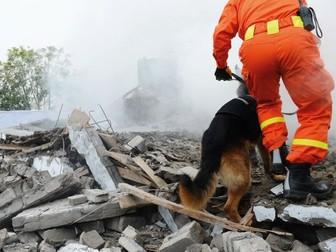 KS3: Studying earthquakes to save lives