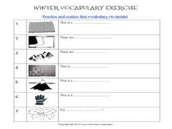 ESL - ELL Winter Vocabulary + Exercices + Quizlet Study Set