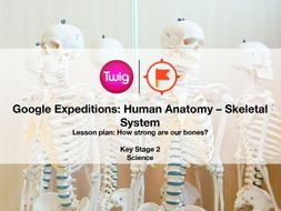 Google Expeditions lesson plan: Human Anatomy – Skeletal System by ...
