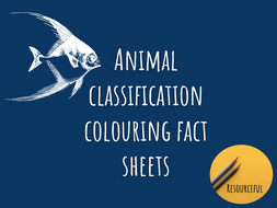 Animal Classification Colouring Sheets