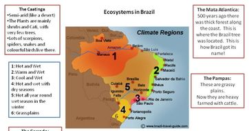 Brazils ecosystems by lpool12 teaching resources tes brazils ecosystems gumiabroncs Choice Image