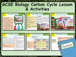 KS4 AQA GCSE Biology (Science) Carbon Cycle Lesson