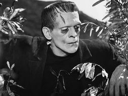 Frankenstein Revision Quiz Quotes Characters Music Pictures