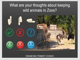 COMPARING HABITATS AND ZOO DEBATE