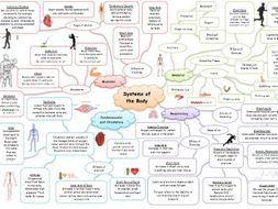 Systems of the Body Revision Mind-map