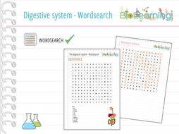 Digestive system - Word search (KS3/KS4)