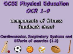 GCSE OCR PE (1.2) Physical Training  - Components of fitness feedback sheet