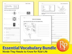 Essential Vocabulary {Bundle}