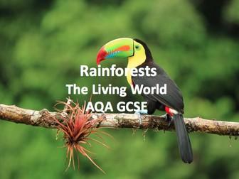The Living World - Rainforests
