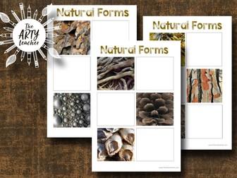 Natural Forms Worksheets - Drawing Skills