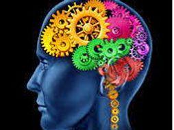 Adolescence and the Brain 10 Week Social Skills Program