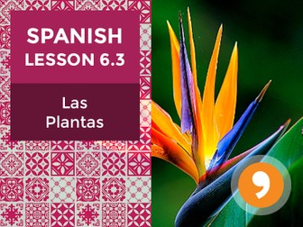 Spanish Lesson 6.3: Las Plantas - Plants