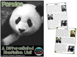 Differentiated Nonfiction Unit: Pandas