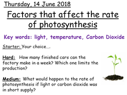 Factors that affect photosynthesis - Year 8 Activate Science