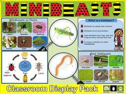 Minibeasts Classroom Display Pack KS1