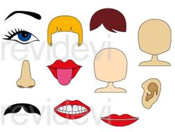 Body Parts Face Clip Art Graphics Teaching Resources