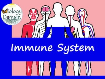 Human Body: Immune System Crossword and Word Search