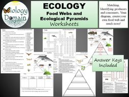 Food Web and Ecological Pyramids Worksheets