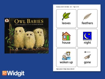 Owl Babies - Big Book Flashcards with Widgit Symbol