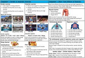 Knowledge-Orgainser-Aerobic-Anaerobic---Short-Term-Effects-Pic.docx