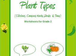 Plant Types Climbers Creepers Herbs Shrubs And Trees