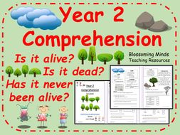 Reading Comprehension - Is it alive, dead or has never been alive? - Year 2