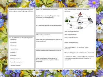 KS3 Food chains, food webs and dependence on other organisms revision mat