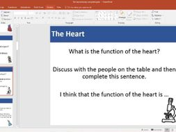 Year 6 Function of the Heart- Unit of work