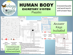 Excretory-System-puzzles.pdf
