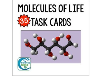 Molecules of Life Task Cards with PowerPoint Review