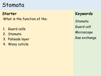 KS3 Plants - Lesson 8 - Stomata (Microscopes)