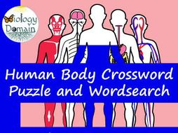 Human Body Crossword and Word Search