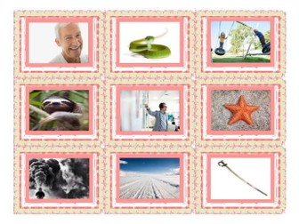 Phonics Consonant Blends sm-sn-sw-sl-pr-st Photo Card Game