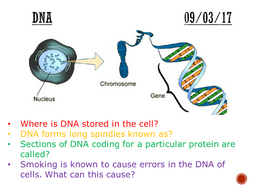 Dna complete lesson gcse 1 9 by mattnick1in teaching dna complete lesson gcse 1 9 ccuart Images