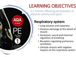 A Level PE (NEW): RESPIRATORY SYSTEM Full PPT Lesson - Unit 1 Anatomy and  Physiology AQA