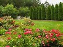 British Garden  Values