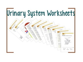 Ancient History Worksheets Excel Search Tes Resources Easter Worksheet Activities Excel with Letter K Worksheet Pdf Urinary System Worksheet  Name Angles Worksheet Pdf