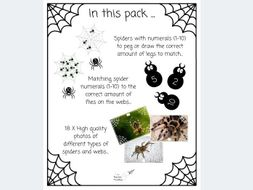 The Spider Number Pack (EYFS)