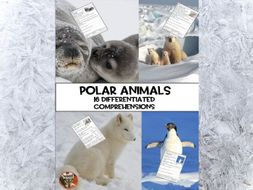 Arctic Animals Comprehensions Year 1