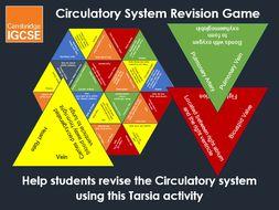 Circulatory System Tarsia Grid - IGCSE Physical Education Revision Game